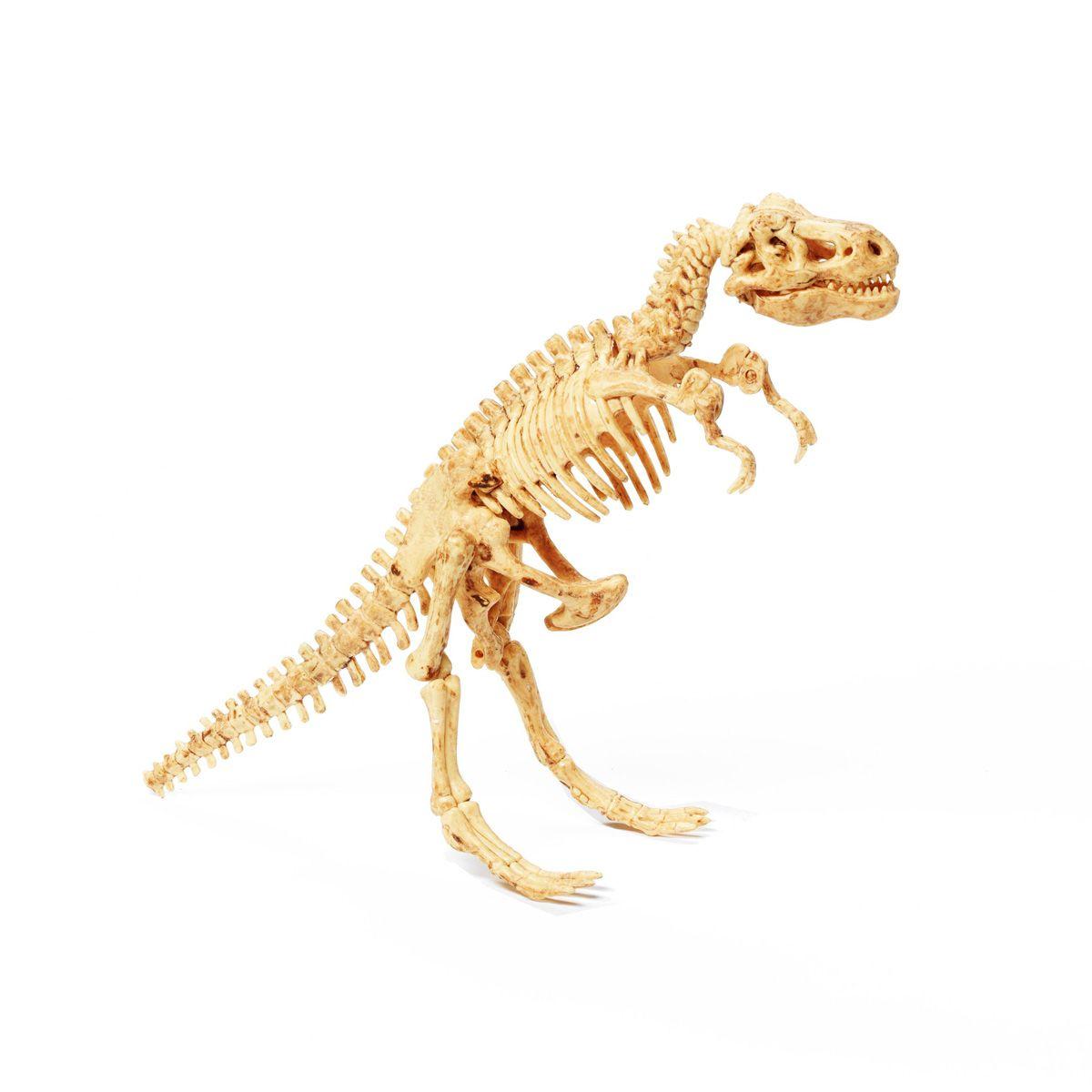 """""""Тираннозавр"""" - французские научно-познавательные опыты Науки с Буки BONDIBON"""